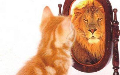 Consejos para trabajar el autoconcepto