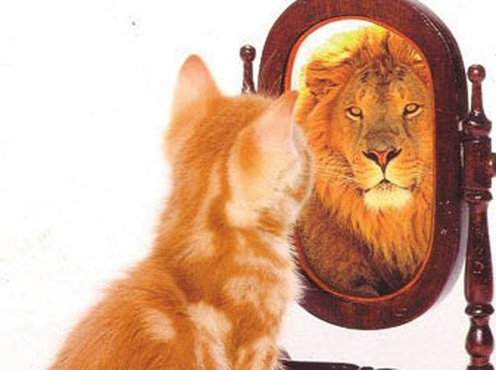 trabajar el autoconcepto